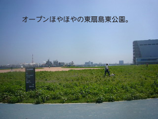 20086